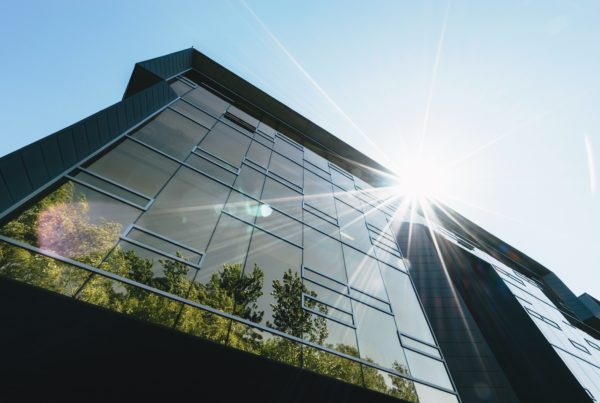 Architecture wants to be green